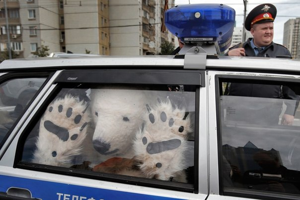 Активист природоохранной организации Greenpeace, Москва. Росси