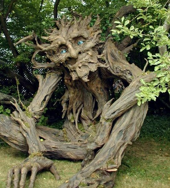 Carvings on a treeby Kim Graham