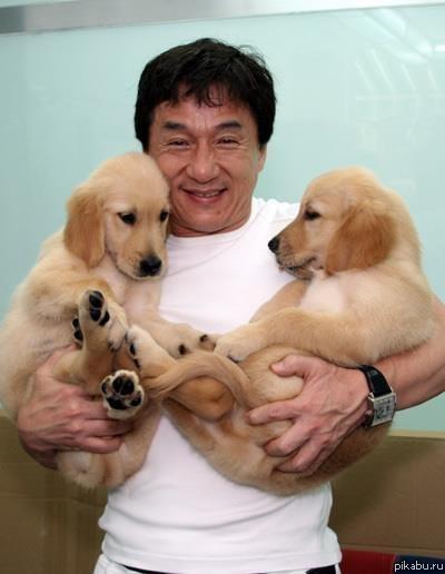 Джеки Чан с собачкамибезумно позитивное фото