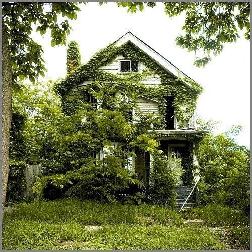 Дом, в котором не живут уже более 50 лет.