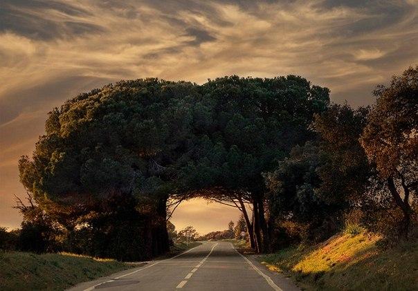 Естественный туннель в Португалии.