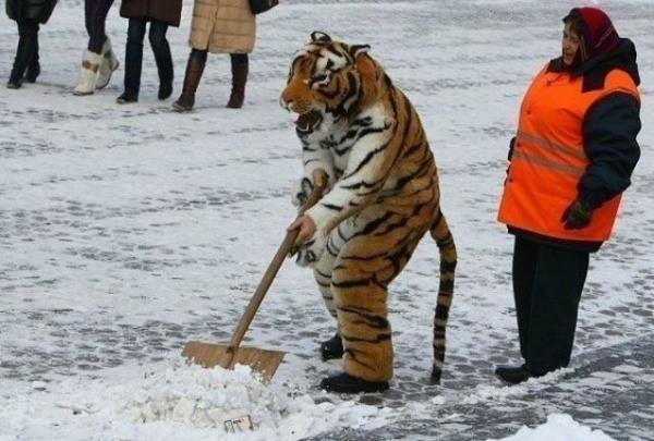 Где-то в России.