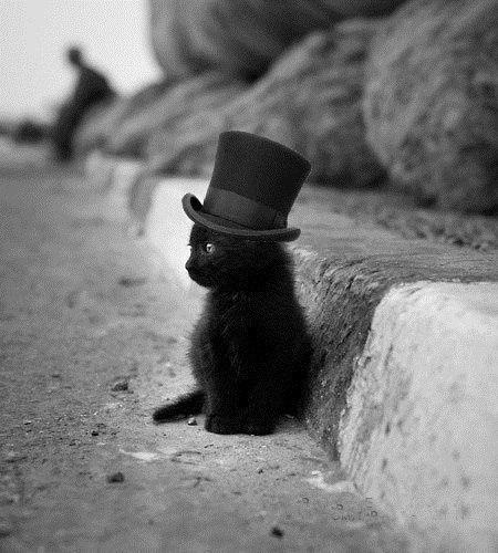 Маленький джентльмен.