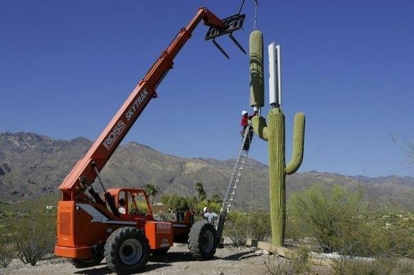 Маскировка вышки сотовой связи, Аризона, США.