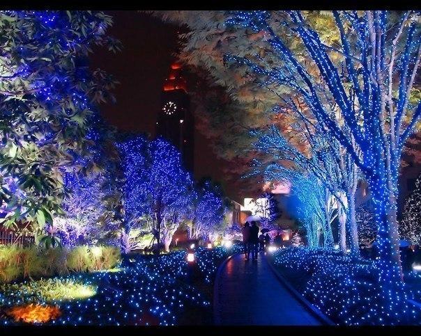 На Рождество так украшают улочки городов в Японии.