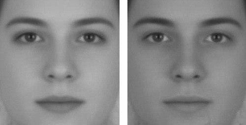 Оптическая иллюзия.На обеих фотографиях - одно и то же лицо