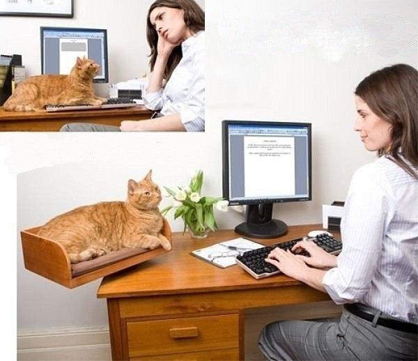 Подставка для кота