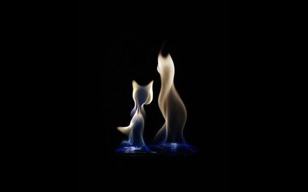 Причудливый танец огня.