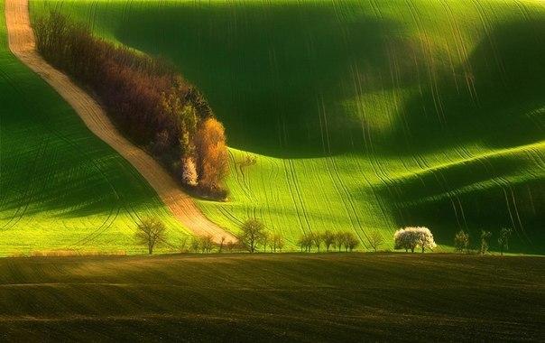 Южная Моравия, Чехия.
