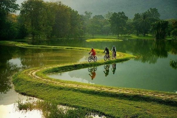 Велосипедная дорога в пригороде Рио-де-Жанейро, Бразилия.