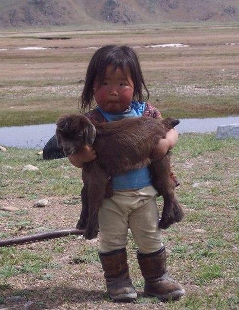 Вьетнамская девочка держит маленькую козу, спасенную от н