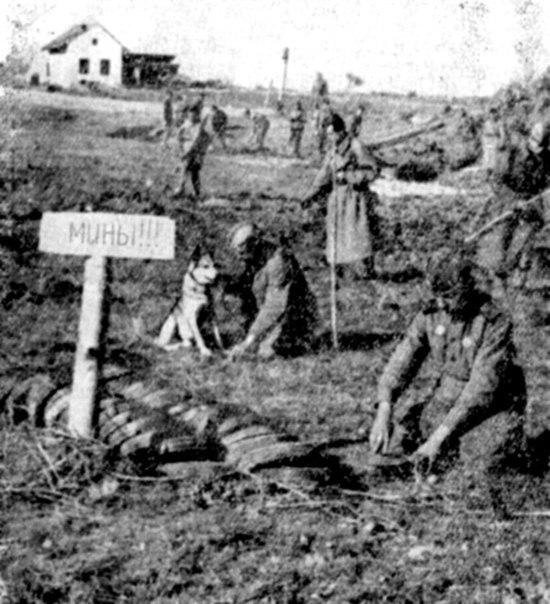 Во время Второй мировой войны разминировать объекты сапёр