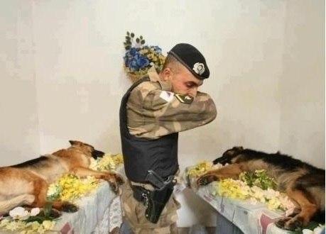 Все герои заслуживают уважения!