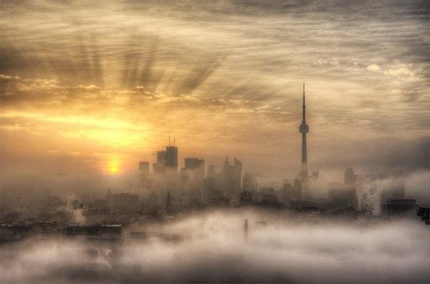 Утро в Торонто, Канада.